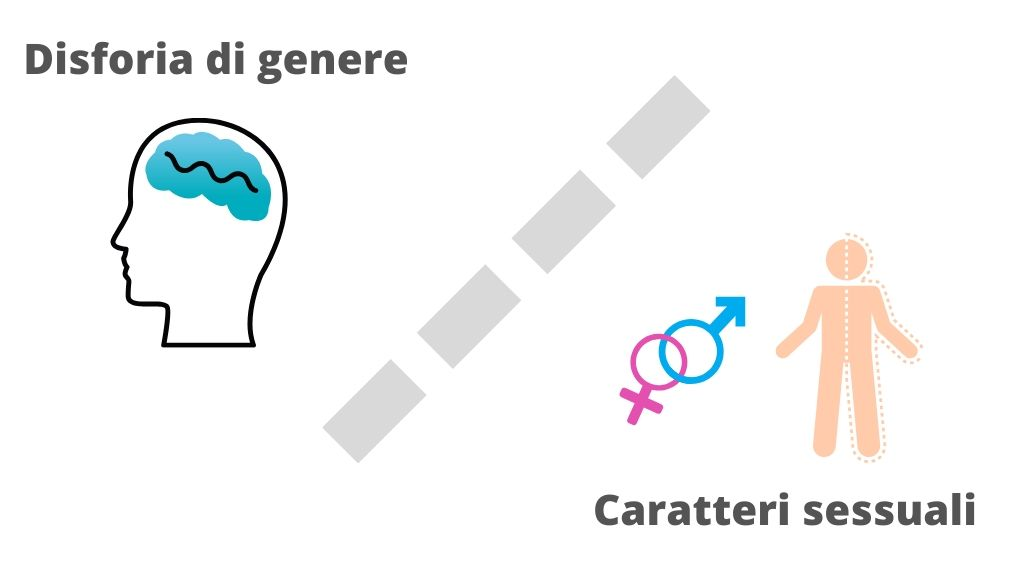 differenza-caratteri-sessuali-primari-seco